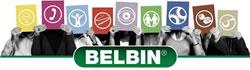 belbin-small